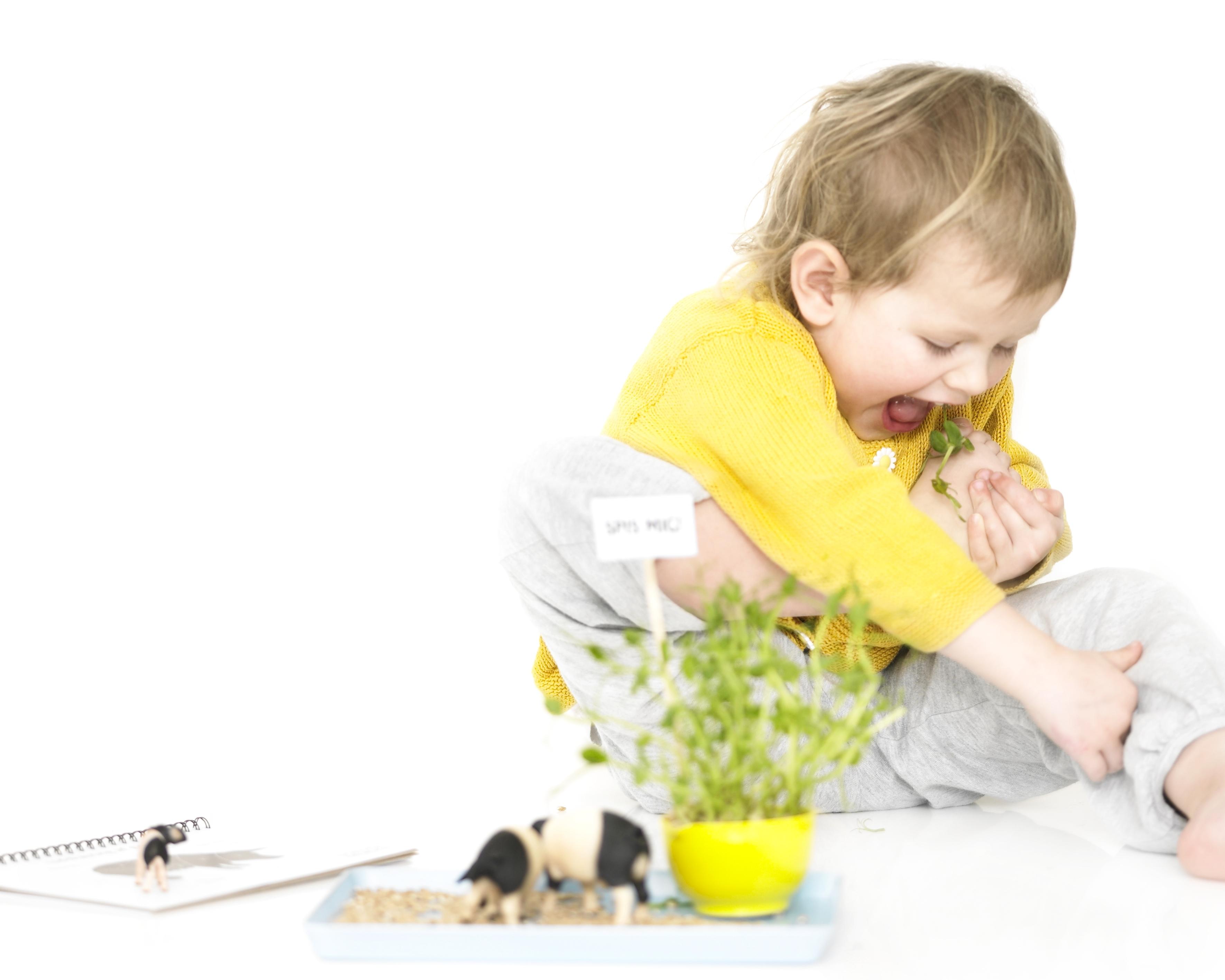 sanser oplevelser for børn